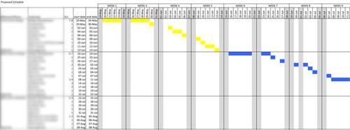 sample timeline