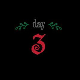 day3_12days