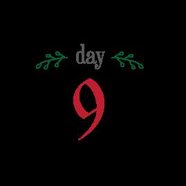 day9_12days